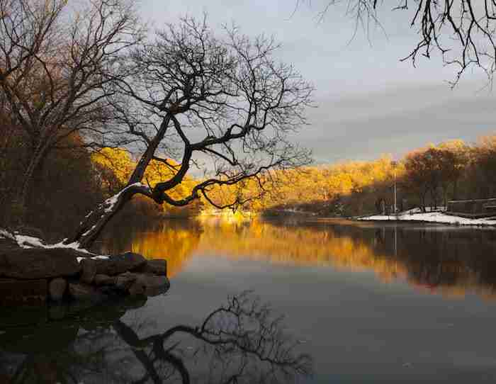 Van Cortland Park nel Bronx