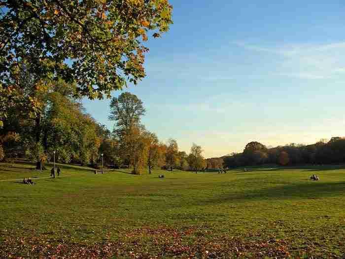 Long Meadow, Prospect Park