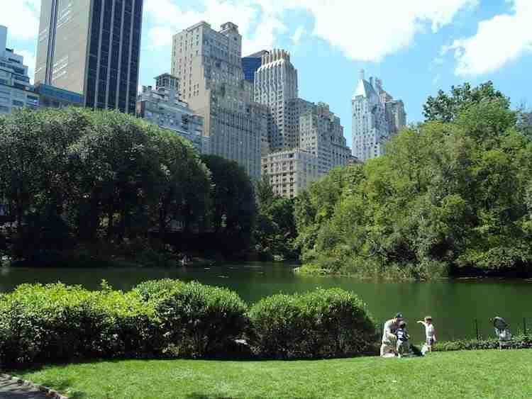 Tour Uptown Manhattan in italiano