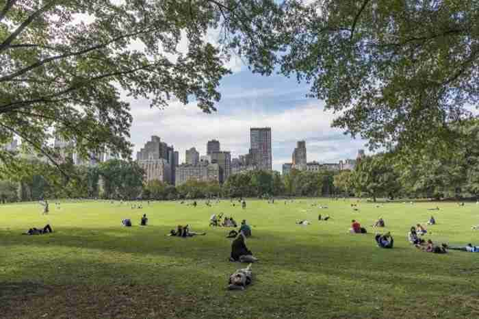 Sheep Meadow, Central Park