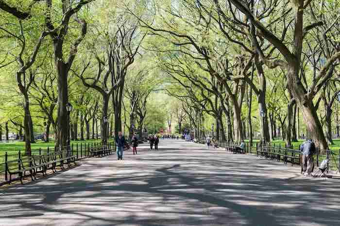 Cosa fare ad Uptown Manhattan