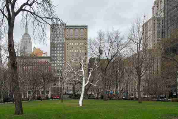 Un'installazione nel Madison Square Park