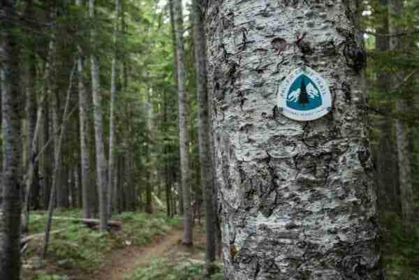 Pacific Crest Trail Marker in Oregon